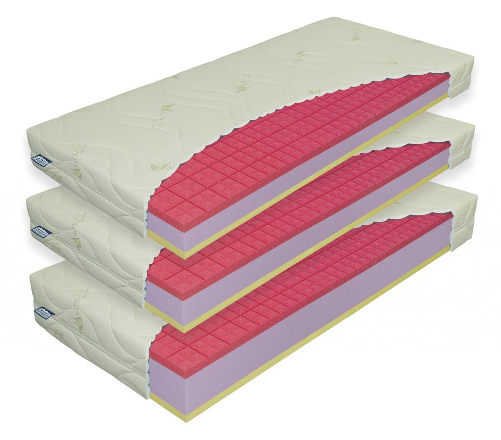 Matrace Antibacterial Visco 24cm 1+1 Materasso
