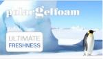 Horní část je tvořena komfortní chladivou Studenou pěnou PolarGel. Při použití jako vrchní vrstva jádra matrace zajistí tato pěna neopakovatelný pocit svěžesti. Jedná se o zcela netoxickou pěnu bez jakýchkoliv nestálých těkavých substancí. Tato pěna špičk